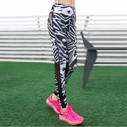 Zebra Print Mesh Panel Women's Leggings Printed Yoga Pants Workout