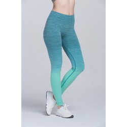 Ombre Activewear Women's Leggings Yoga Pants Workout